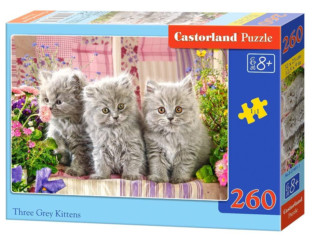 Castorland CSB27491 Puzzle, Various