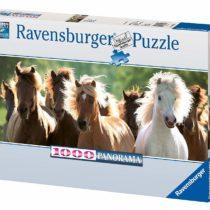 1000 Pieces Puzzle Wild Horse