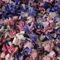 1 Litre Natural Biodegradable Delphinium Petals Wedding Throwing Confetti